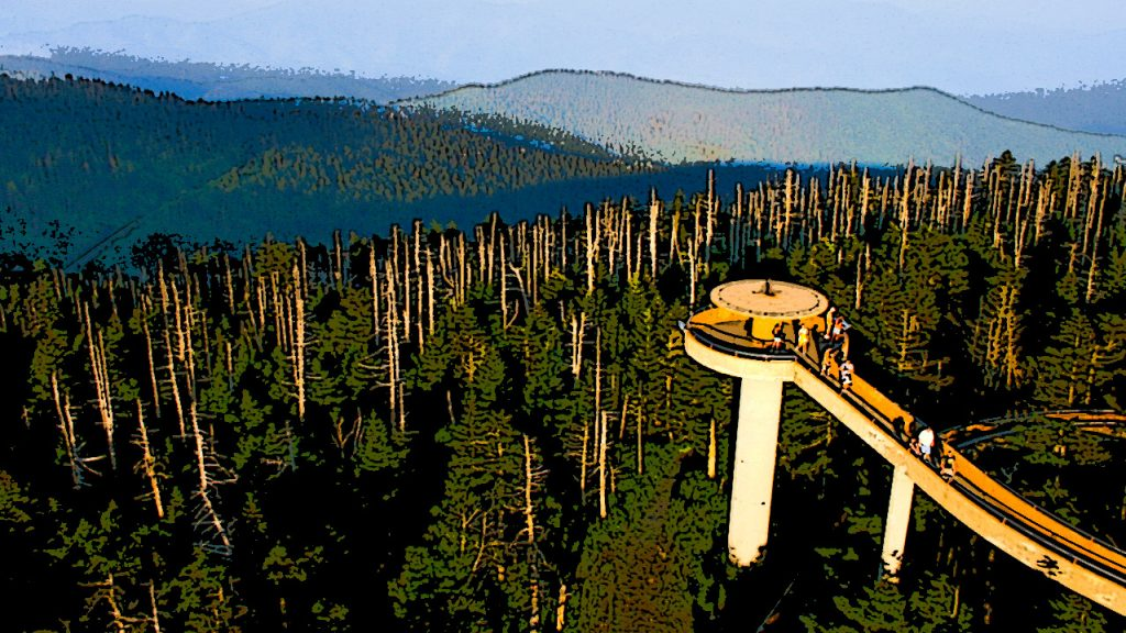 Clingsman Dome